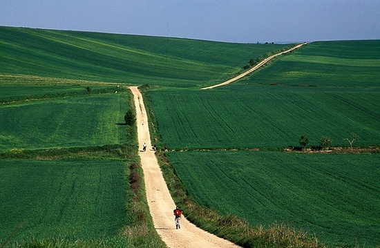 Camino de Santiago de Compostela-Spain! Im going to do this before i die!