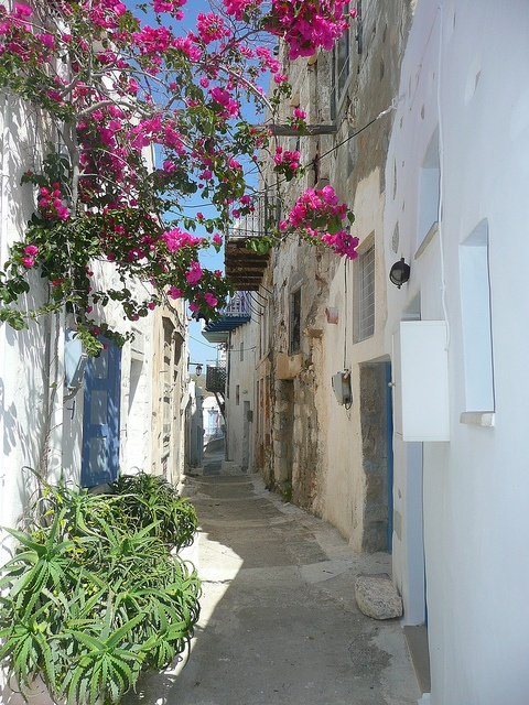 A serenely beautiful street in Astypalaia, Greece.