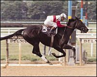 Ruffian undefeated filly.Died in her last race. The only horse to be buried in Belmont center field with her nose pointing to the finish line