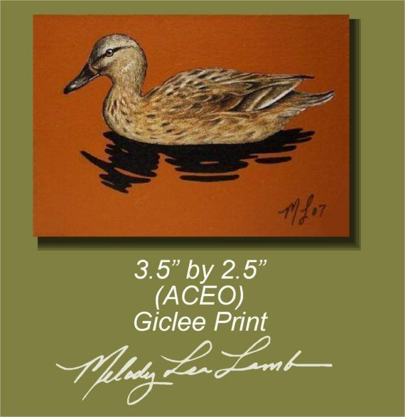Duck Art by Melody Lea Lamb ACEO Print Orange 41 by MelodyLeaLamb (Art & Collectibles, Prints, Giclee, giclee, small art, melody lea lamb, bird, bird art, cute, mini art, colorful gift, orange, duck, aceo, melody lamb, duck painting)