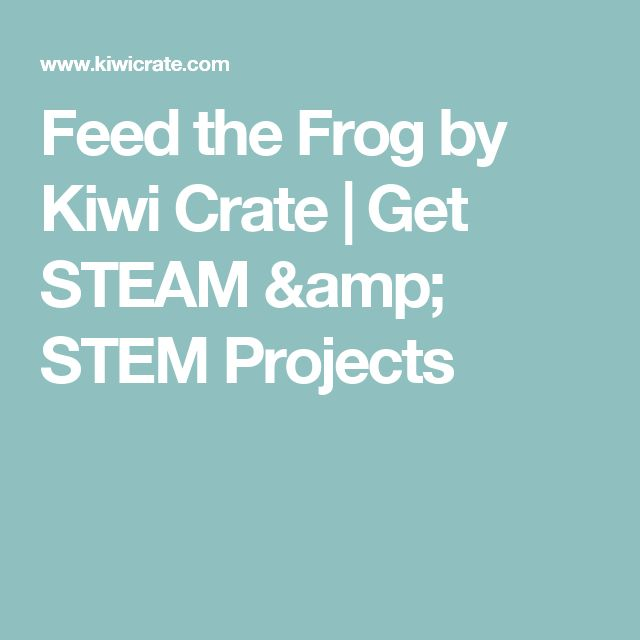 Feed the Frog by Kiwi Crate | Get STEAM & STEM Projects