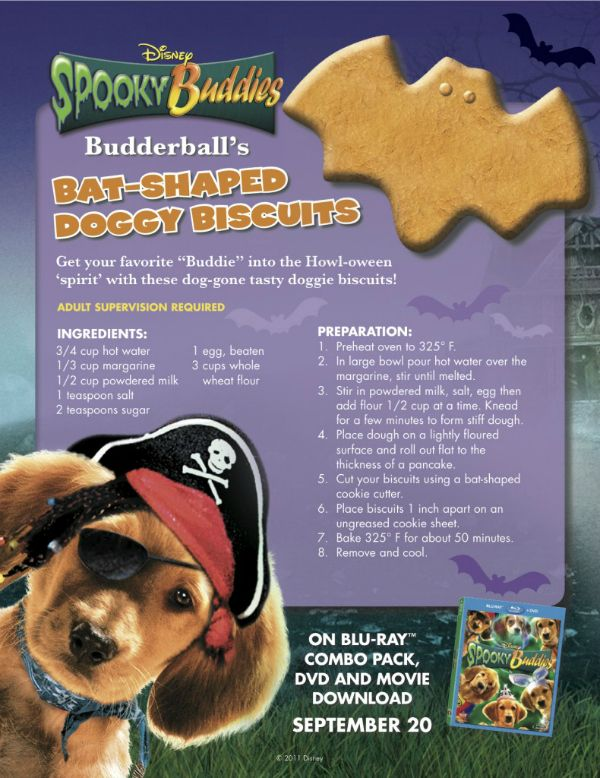 Spooky Buddies Bat Shaped Doggie Biscuits for Halloween