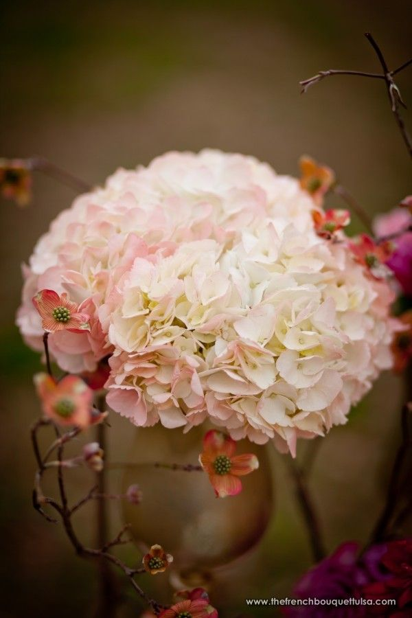Wedding Flowers In Blush Pink Best Images About Lisa S Big Day On