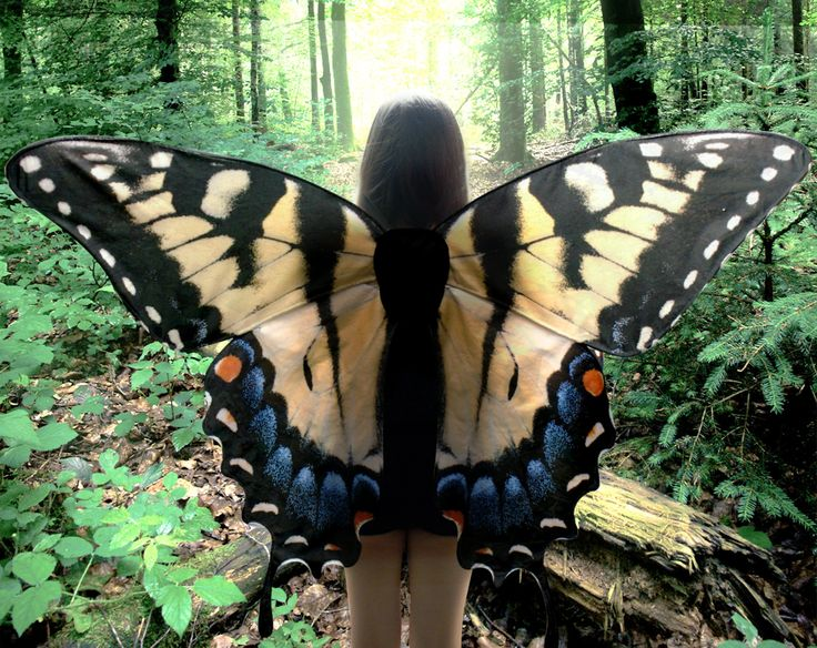 Oversized Swallowtail Butterfly Costume Wings - Made to Order - Butterfly Halloween Costume by LovelyLepidopterae on Etsy https://www.etsy.com/listing/166757408/oversized-swallowtail-butterfly-costume