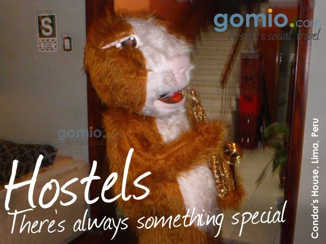 Everybody met once a #guitar playing #traveler at a #hostel...but what about a #saxophone #playing #hamster?  www.gomio.com  with #CondorsHouse in #Lima, #Peru   http://www.gomio.com/en/hostels/south-america/peru/lima/Condor%27s-House/overview.htm  #Crazy #Funny #Fun #lol #funtravel #animal #cute #sweet #carnival #accommodation #backpacking #backpack #loco