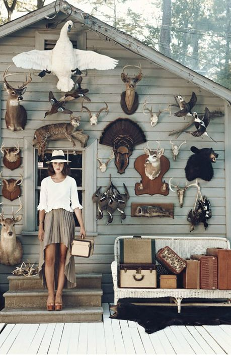 decorationSkirts, Style, Taxidermy, Antlers, Animal Head, Outfit, Dreams House, Display, Outdoor Spaces