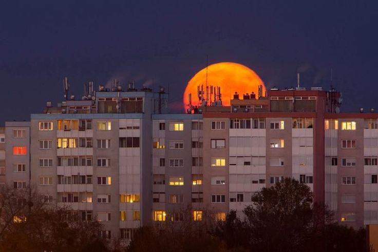 Vista de un grupo de edificios con el fondo de la superluna en Nagykanizsa, a 208 kilómetros al suroeste de Budapest, Hungría. (EFE)