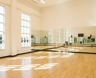 Add a killer stereo system and this dance room would be amazing!!