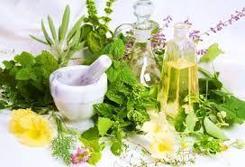 Τα βότανα και οι χρήσεις τους απο το Α εως το Ω!