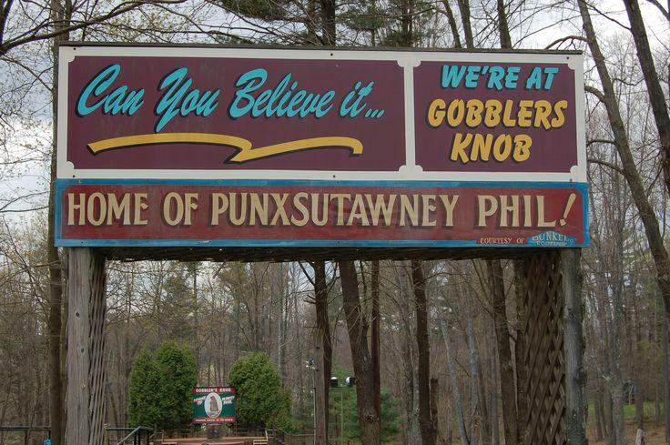220 Best Groundhog Day, Punxsutawney Phil Images On