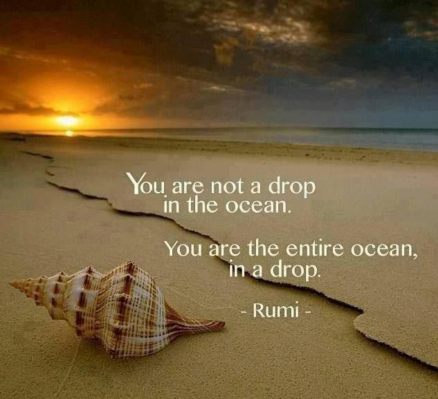 """""""Je bent geen druppel in de oceaan. Je bent de hele oceaan in een druppel."""" (Rumi)"""