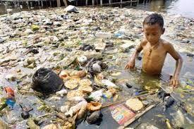 Bildergebnis für umweltverschmutzung müll im wald