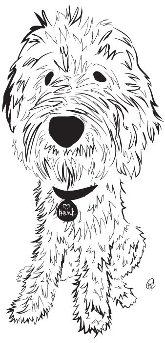 Best 25 Goldendoodle art ideas on Pinterest Dog art Dog