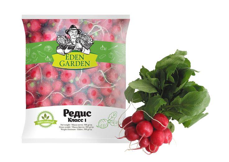 Дизайн упаковки редиса для компании Eden Garden. packaging design Radish for the company Eden Garden.