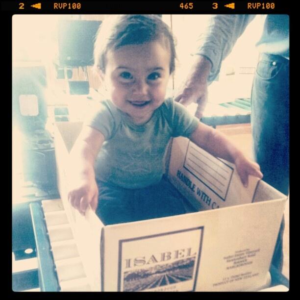 Juno in a box