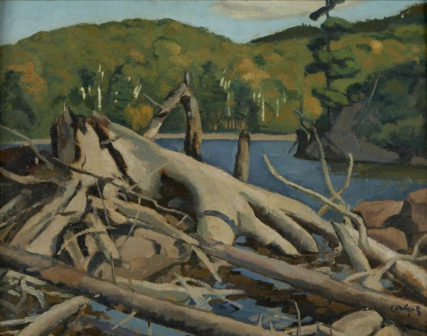 """""""Old Pine Root, Lac Tremblant,"""" Edwin H. Holgate, 1927, oil on board, 12 1/8 x 15 5/8"""", Art Gallery of Hamilton."""