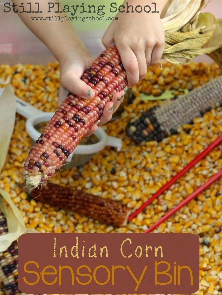 Indian Corn Sensory Bin from Still Playing School