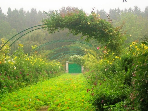 Monet's Garden in Giverny, FranceMonets Garden, Favorite Places, Life Change Places, Beautiful Things, Monet Gardens