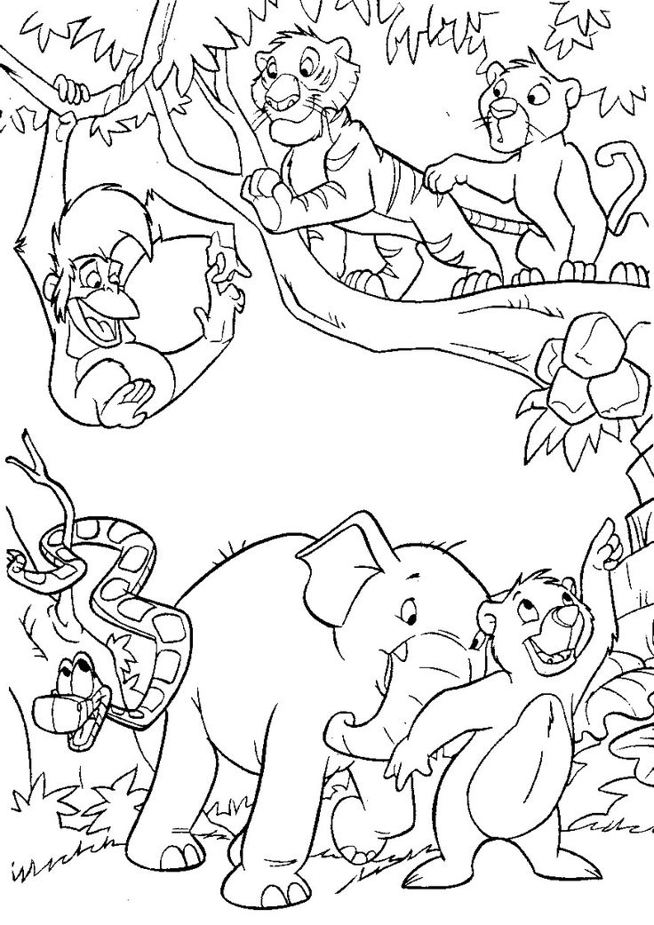 jungle coloring book pages