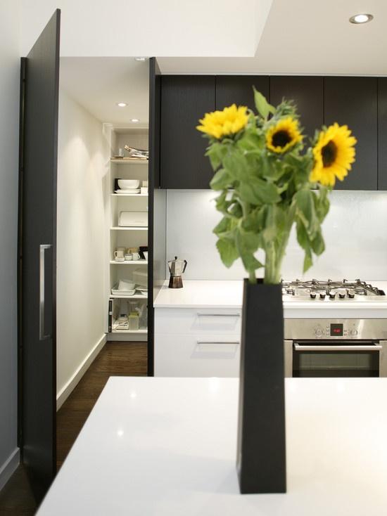 Kitchen Modern Walk In Pantry