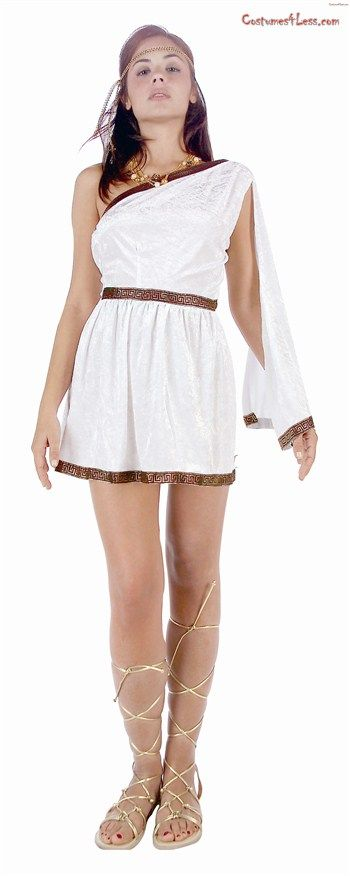 The 25 best toga costume ideas on pinterest toga costume diy this womenaposs toga costume includes a stretchable gown made of velour fabric the solutioingenieria Images