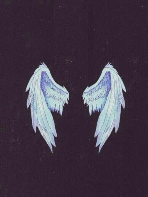 #white #wings