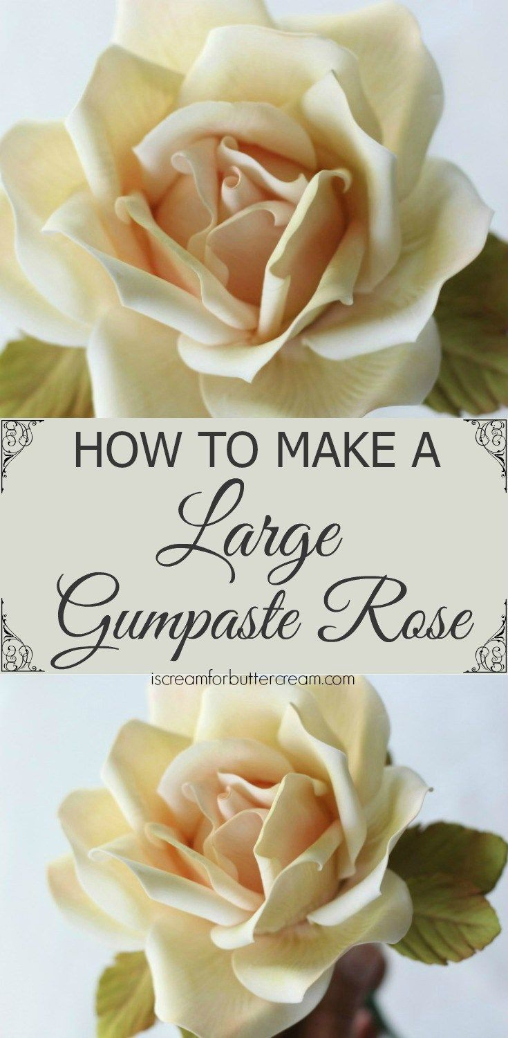 Learn how to make a large gumpaste rose in this detailed tutorial plus video.   cake decorating ideas