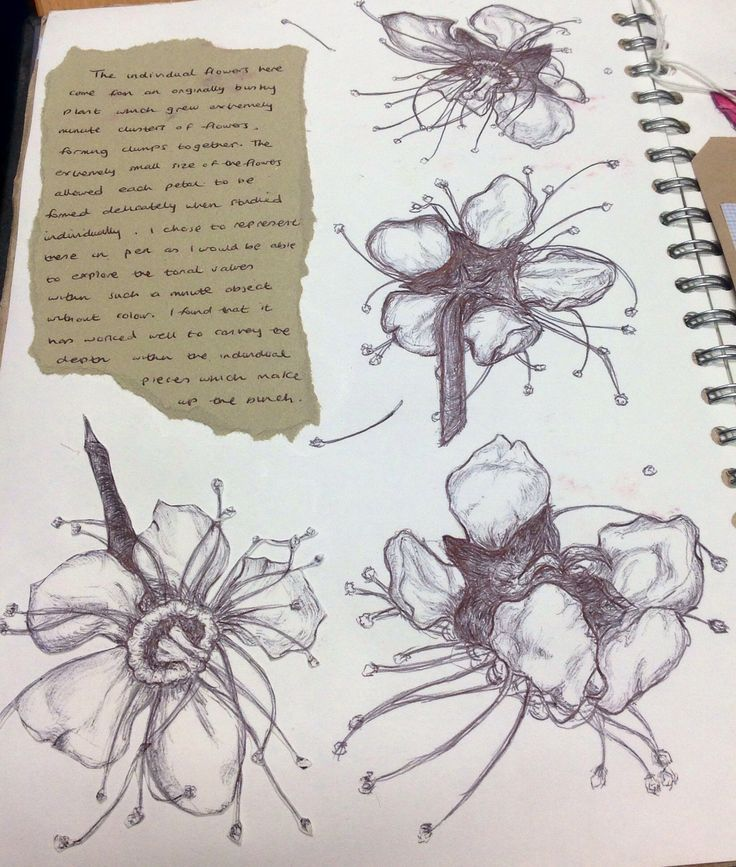 flowers textiles a level - Google Search