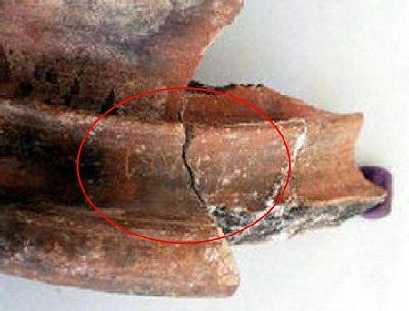 Tamil-Brahmi Script Found in Egypt | Mystery of India