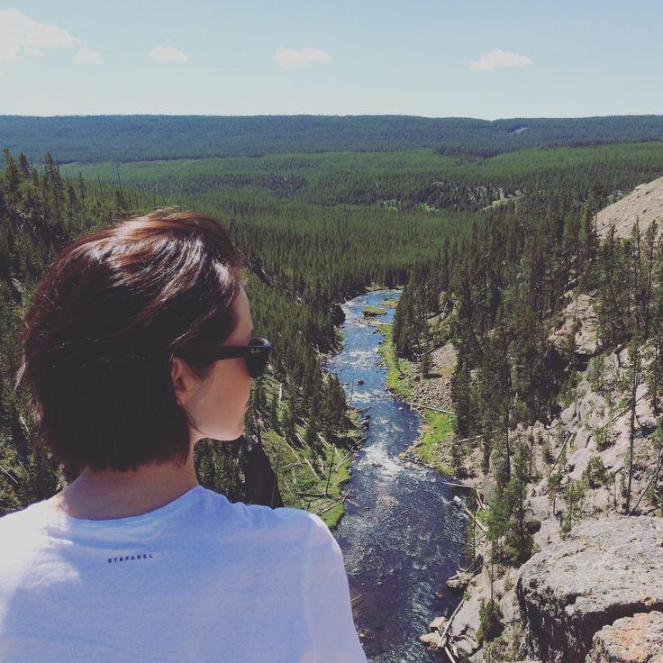 Lipiec 2016 – Jestem w lesie