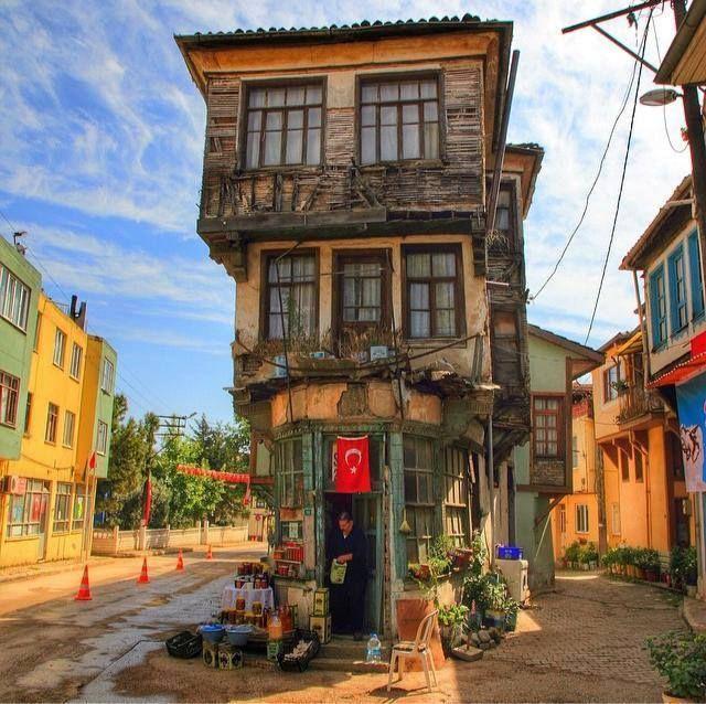 TRİLYE - MUDANYA / TÜRKİYE
