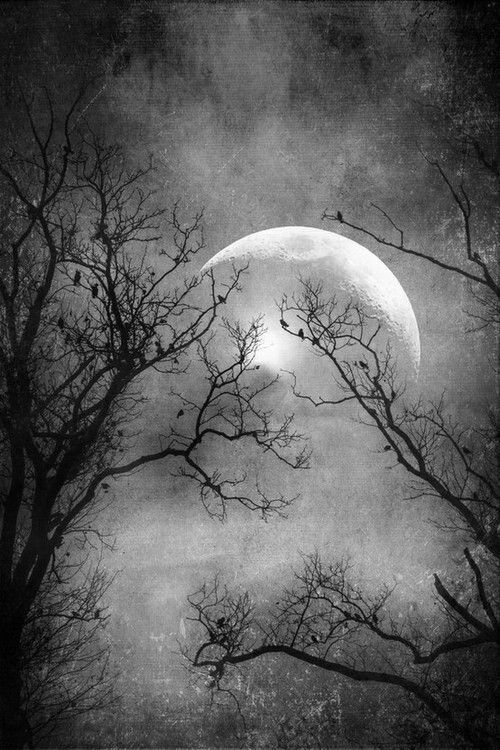 A Witches moon