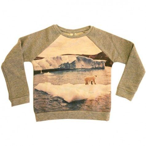ice mountain basic sweatshirt