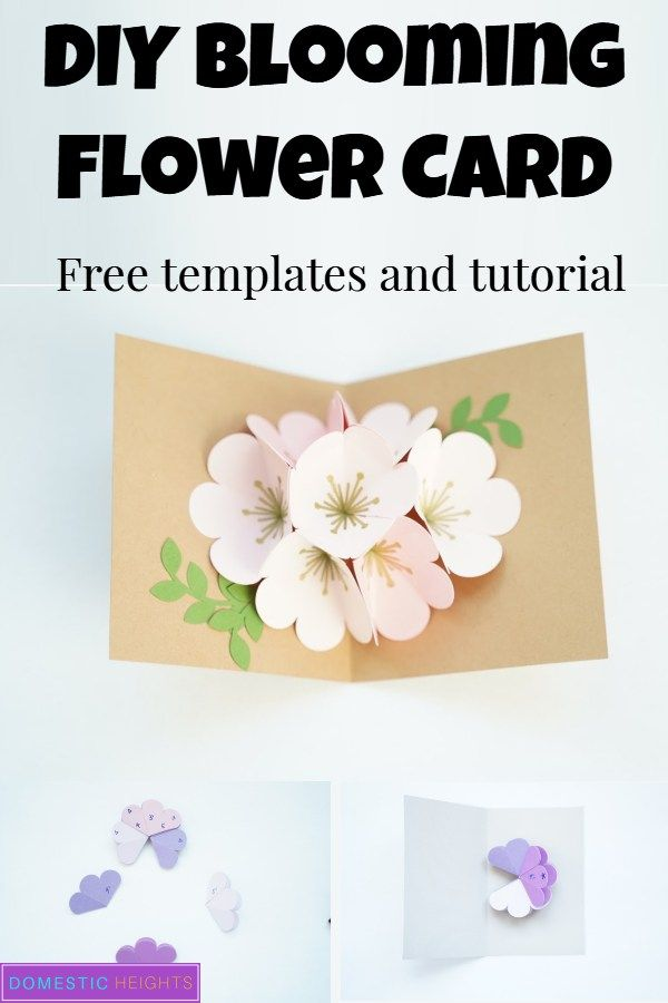Cricut Pop Up Flower Bouquet Domestic Heights Pop Up Card Templates Pop Up Flower Cards Popup Cards Tutorial