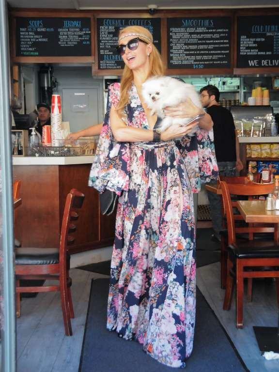 Celebs and their pets in 2016:     Paris Hilton was seen with her dog in Los Angeles on April 21. - Bauer-Griffin/Getty Images North America