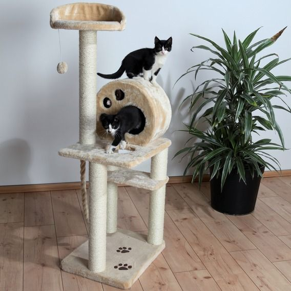 Трикси Комплекс для кошек Salamanca, 40*50*138 см, Trixie