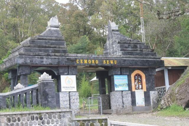15 Pemandangan Di Gunung Lawu Pencarian Keberadaan Alvi Menurut Ustad Sukma Wijaya Di Gunung Lawu Tim Relawan Dan Ki Pranlewu O Di 2020 Pemandangan Bunga Perjalanan
