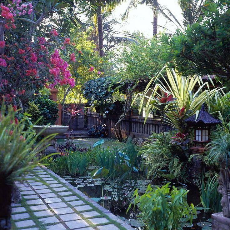 1203 Best Garden Images On Pinterest Tropical Gardens