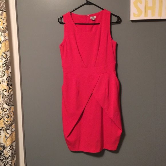 Pink Work Dress Really cute and never worn! It doesn't fit my hips right. Dresses