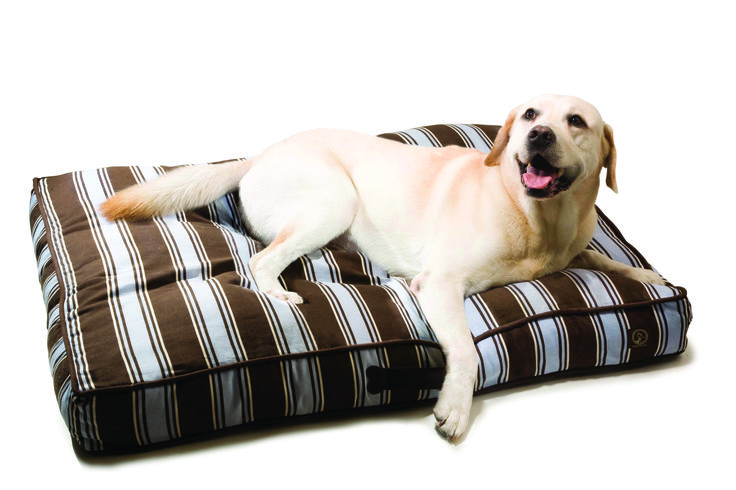 Time for a nap. Our classic pillow bedding series is designed to provide the comfort, support and durability that your pet needs (as well as the high quality, attractive design, and affordable price that YOU want!).