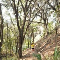 A nice break from road runs! Alafia River State Park, Lithia, Florida