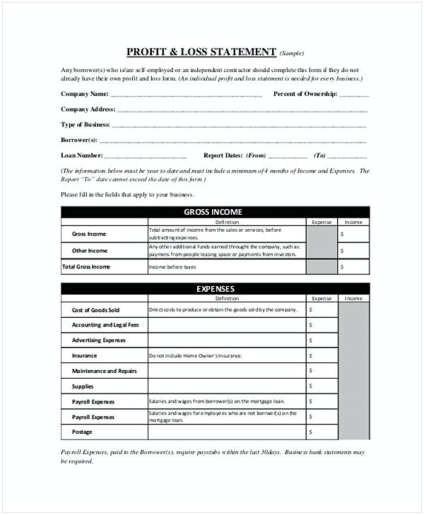 42 Profit And Loss Statement Template For Professional Business