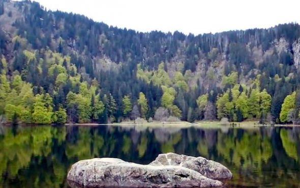 Te ayudamos a preparar tu#rutaSelvaNegra, boscosa zona de más de 6.000km² en el estado de Baden-Wurtemberg, en Alemania.