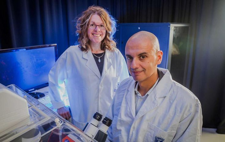 Thanks to a generous donation from Engineering alumnus Leigh Clifford AO and family, the University's Centre for Neural Engineering is bringing us closer to the causes and possible solutions for conditions like autism, epilepsy and schizophrenia. ‪#‎believemelb‬