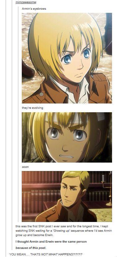 Armin's evolution