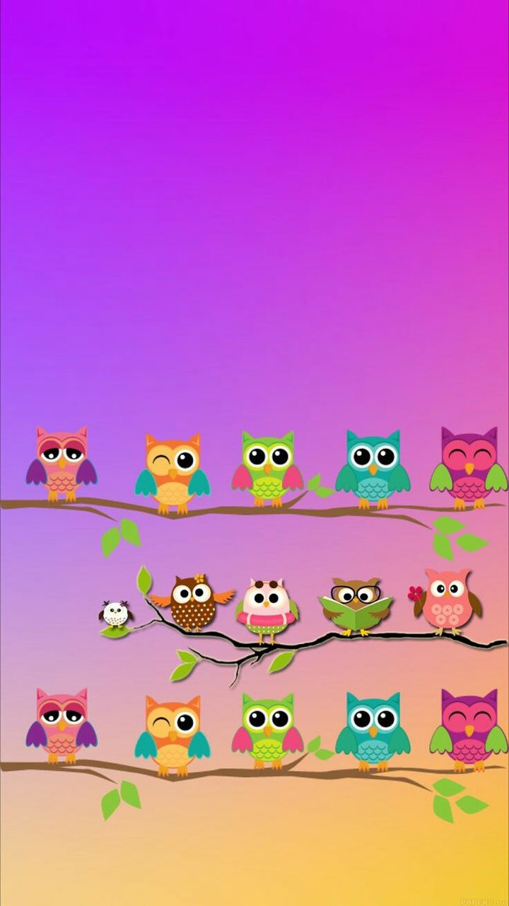 Cute Owl Wallpaper Download Cute Owls Wallpaper Owl Wallpaper Owl Wallpaper Iphone