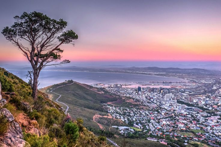 On the slope of Lion's Head you get a magnificent view of Cape Town city below. This was a beautiful sunset and a fantastic walk.