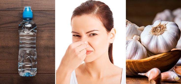 Si te alimentas bien, olerás bien. Conoce algunos alimentos que disminuyen el mal olor corporal. Apartemos un poco la máscara del desodorante y come bien.