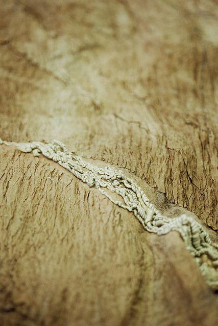 Surfaces | Flickr - Photo Sharing!