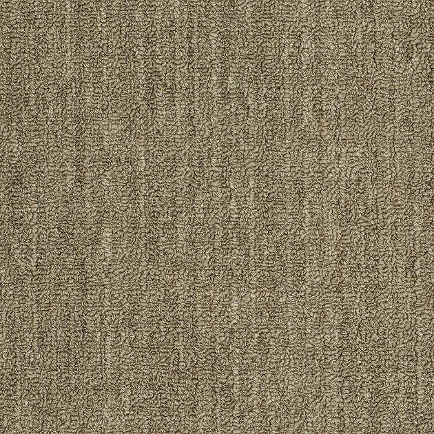 Shaw Grant Broadloom Carpet Vidalondon